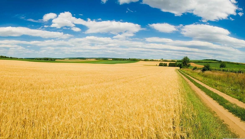 самых сельское хозяйство картинки высокого качества хюррем
